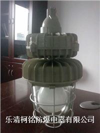 整體式防爆無極燈 BCD-W