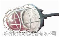 一體式防爆燈 BCD