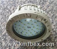 雙管單管防爆防腐LED燈