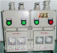 BXM(D)防爆照明(動力)配電箱詳細資料