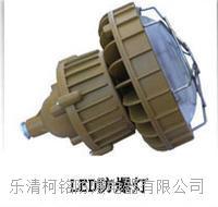 LED防爆節能照明燈規格 BLD系列