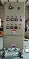 鋼板焊接立式防爆箱柜