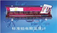 标准铂电阻温度计 WZPB-2