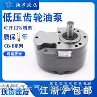 齿轮泵 CB-B2.5
