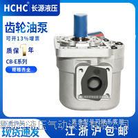 齿轮油泵 CB-E20-BFP