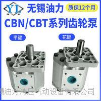 齿轮泵  CBT/CBN-F532/F563
