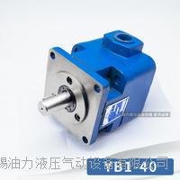 YB1叶片泵
