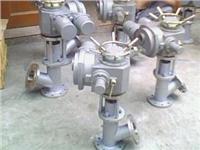 DHG95-19-1电动柱塞放料阀-上海电立阀门