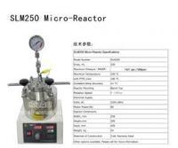 250ml微型 反應釜