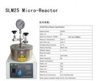 25ml微型反應釜