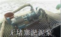 无堵塞污泥泵