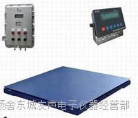 張家港防爆電子秤,地磅,稱重模塊,傳感器,儀表 EX-0833