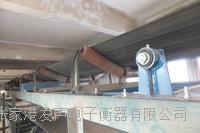 江陰皮帶秤,維修 MTS-21C