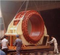 高壓電機 高壓電機維修 高壓電機維修廠 廣州市高壓電機修理廠13609778909 YR158-8