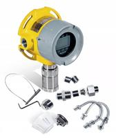 有毒有害气体探测器 RAEGuard 3