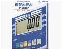 DP-6100GP稱重顯示器 DP-6100GP