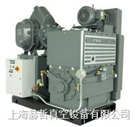 Stokes 1722S 機械增壓泵組合 Stokes真空泵