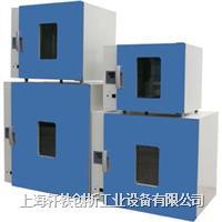 电热恒温鼓风干燥箱 XH-T