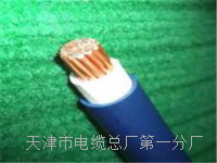 dp电缆型号 dp电缆型号
