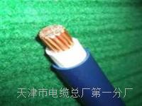 bvs电缆 bvs电缆
