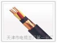 控制电缆KVVP2-22-4×2.5 控制电缆KVVP2-22-4×2.5