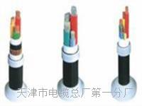 控制电缆KVVP22-14×1 控制电缆KVVP22-14×1