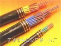 控制电缆KVVP22-12×1 控制电缆KVVP22-12×1