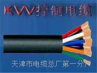 控制电缆KVVP22-19×0.75 控制电缆KVVP22-19×0.75