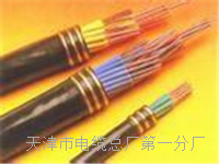 控制电缆KVVP24×1 控制电缆KVVP24×1