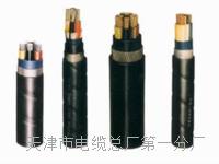 控制电缆KVV22-10×0.75 控制电缆KVV22-10×0.75