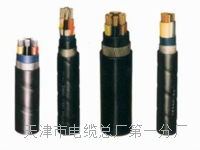 控制电缆KVV16×1 控制电缆KVV16×1