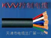 控制电缆KVVP2×1 控制电缆KVVP2×1