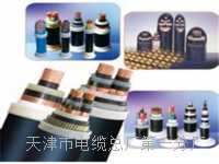 PTYV电缆(价格-厂家-报价) PTYV电缆(价格-厂家-报价)