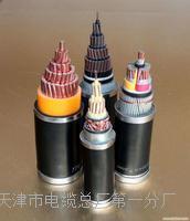 电源监控总线NH-RVS选型手册 NH-RVS电源电缆线
