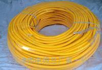电源监控总线NH-RVS重量 NH-RVS电源电缆线