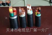 电气火灾监控线NH-RVS通用型号 NH-RVS电源电缆线