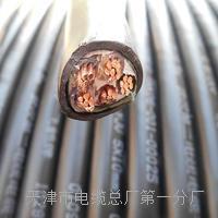双屏蔽工程网线-千兆CAT6类双屏蔽4N级无氧铜线芯实物图 HYA53电话电缆线
