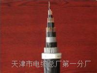 行政电话电缆HYA-50x2x0.5型号规格 SYV视频电缆线