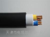 行政电话电缆HYA-50x2x0.5额定电压 SYV视频电缆线
