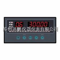 八路溫度巡檢儀/迅鵬WPLE-A08  WPLE