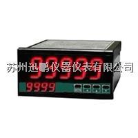 迅鵬 SPA-96BDW直流功率表 SPA-96BDW