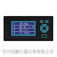 蘇州迅鵬WPR10壓力無紙記錄儀? WPR10