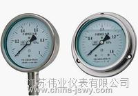 壓力表 Y-100 WIKA  Y-100 WIKA