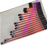 110KV高压验电器 SL