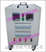 三相交流負載箱 LYFZX-II-10KVA/380V