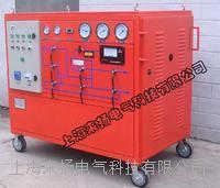 SF6氣體沖放及回收裝置 LYGS4000
