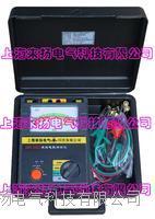 绝缘电阻测量仪 LY2671