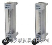 LZB-DK800型流量計 LZB-DK800