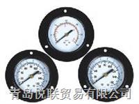 Y-普通壓力表(軸向帶邊) YTN