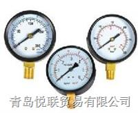 Y-普通壓力表(徑向) YTN